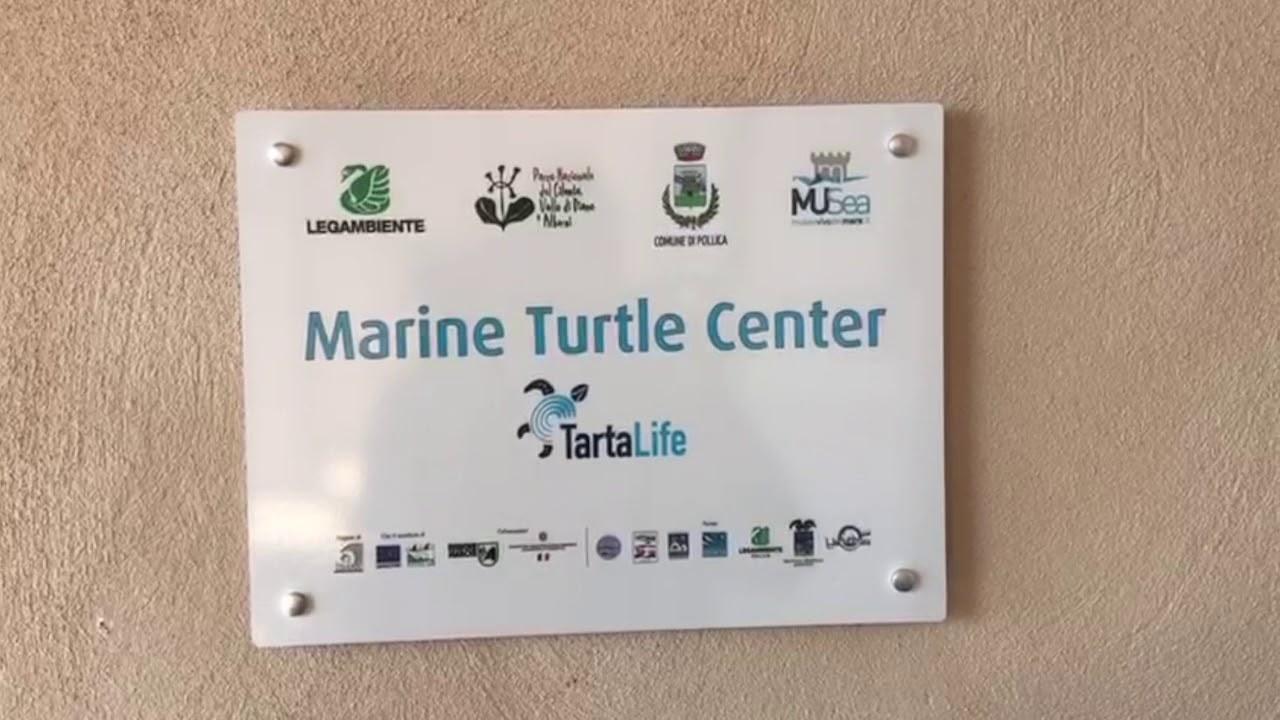 Pioppi, casa delle tartarughe