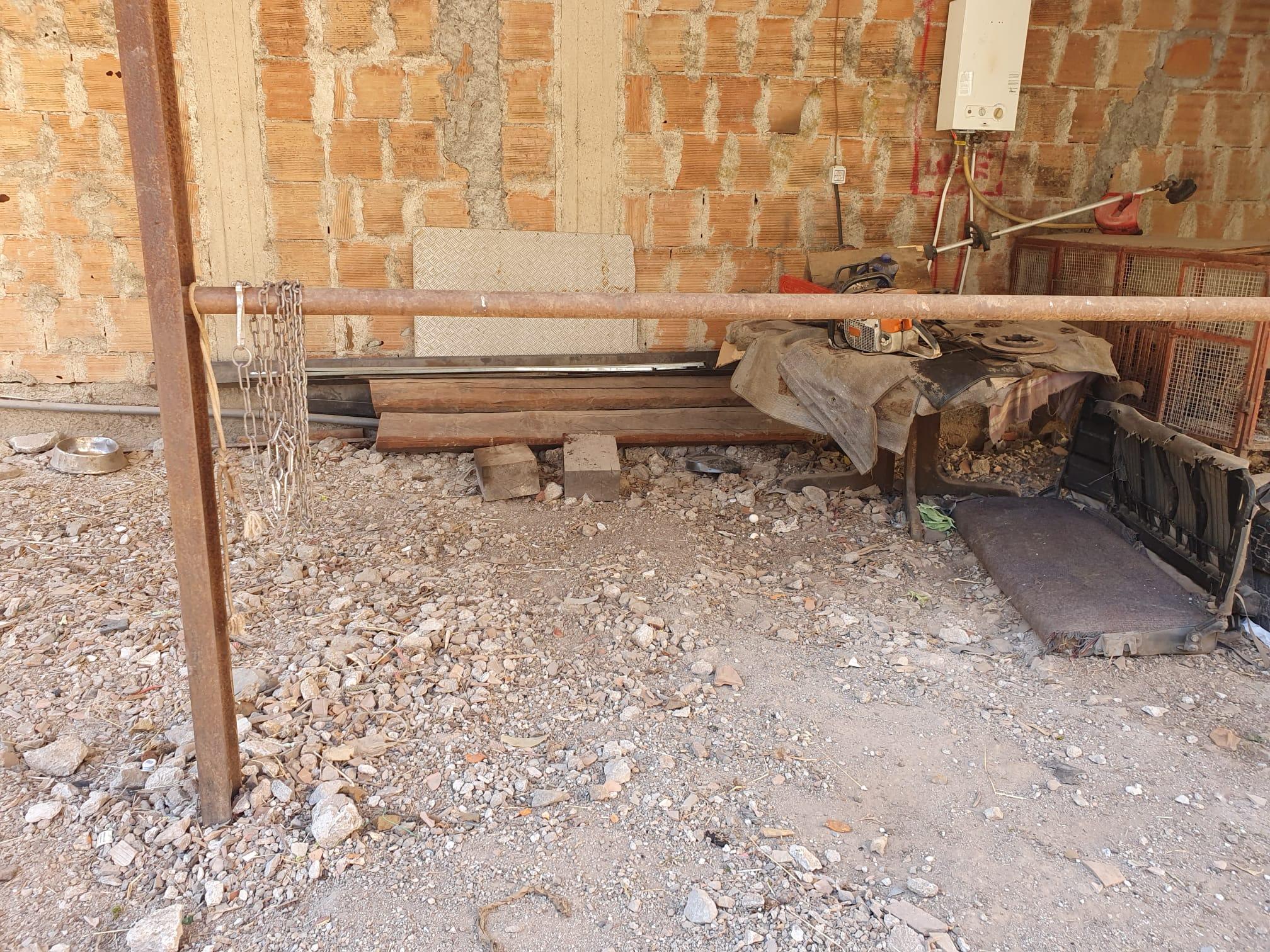 Tre cani morti in pochi giorni, allarme bocconi avvelenati a Poderia