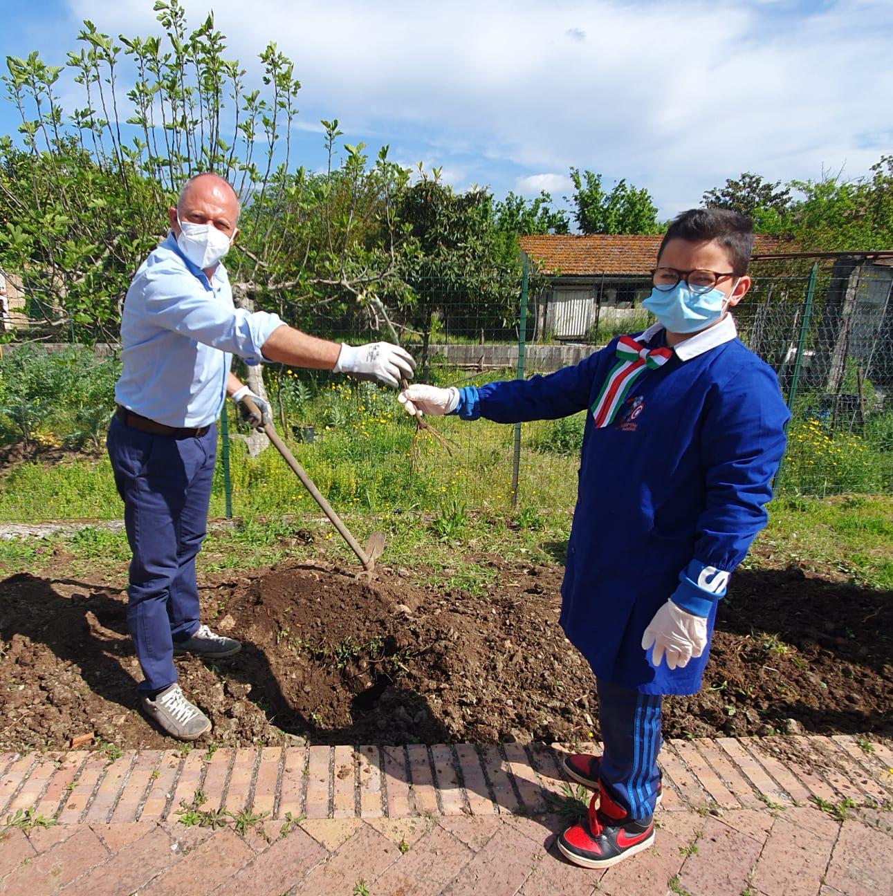 """""""Il piccolo vigneto"""", a Celle di Bulgheria il progetto che valorizza l'uva locale"""