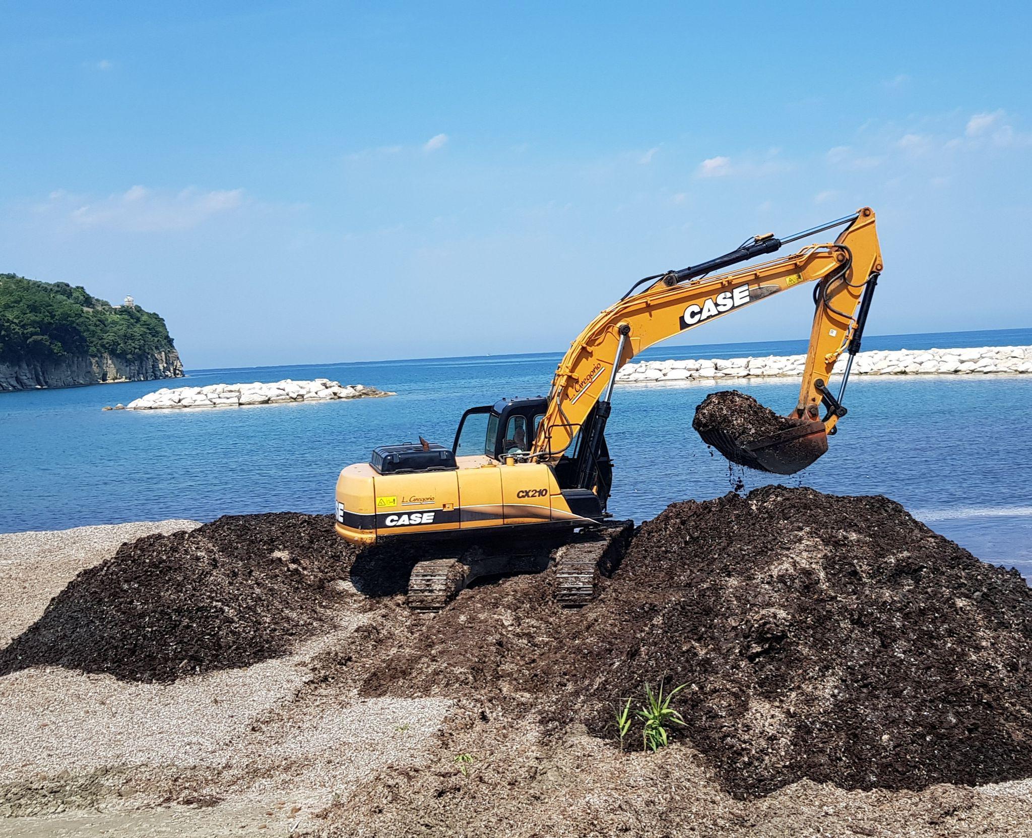 Posidonia spiaggiata, iniziati i lavori di pulizia della spiaggia del lido Azzurro ad Agropoli