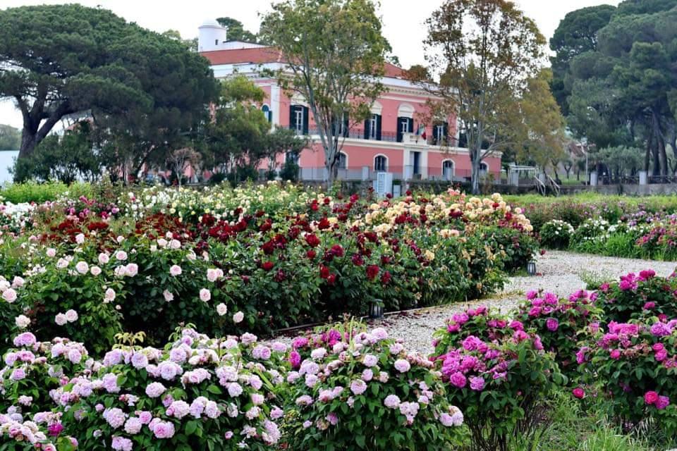 Parco del Cilento inaugura il Museo del paesaggio e della natura a Villa Matarazzo